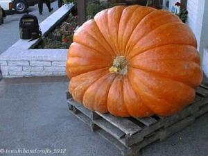 Bainbridge Pumpkin