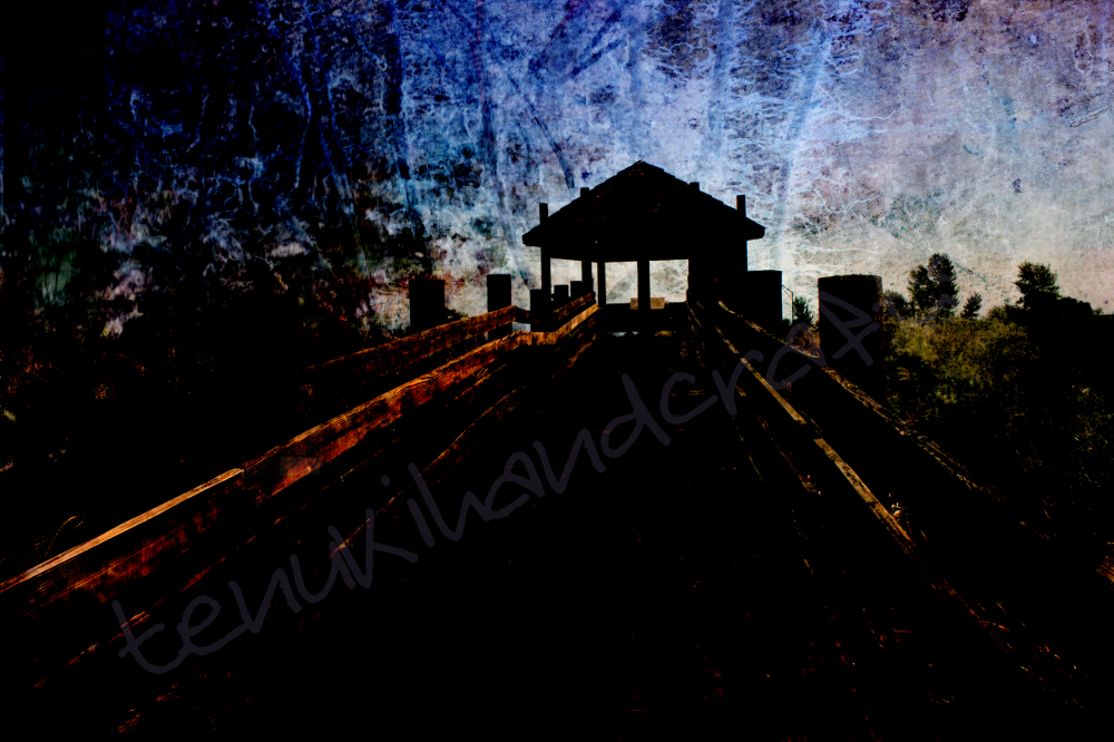 Mod-2-Landscape-RoadTripwithMom_5541