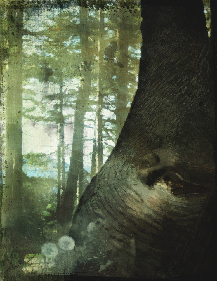 tree-spirit
